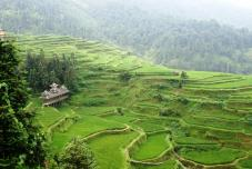 voyage culturel chine