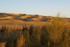 désert du Taklamakan - Voyage culturel Chine